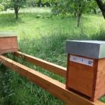Zertifizierung der Honig-Bienen Imkerei
