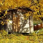 Herbst bei den Honig-Bienen und Honig Verkauf